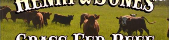 Henry & Jones Grass Fed Beef – Breakwater